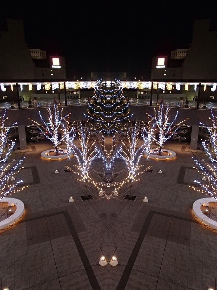 12月25日④