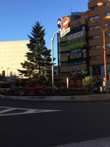 写真2_M0114332